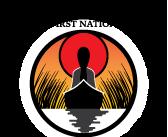 MSIFN-Logo